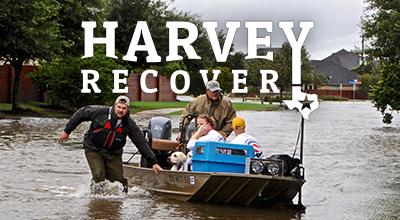 Harvey Recovery
