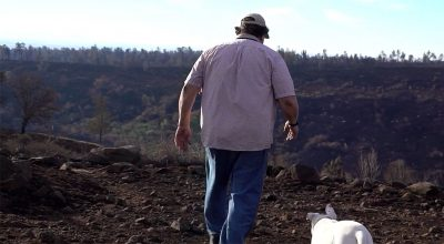 Camp Fire: Butte County Strong