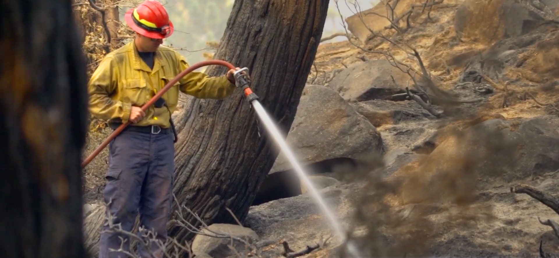 The Gift of Compassion After the Caldor Fire